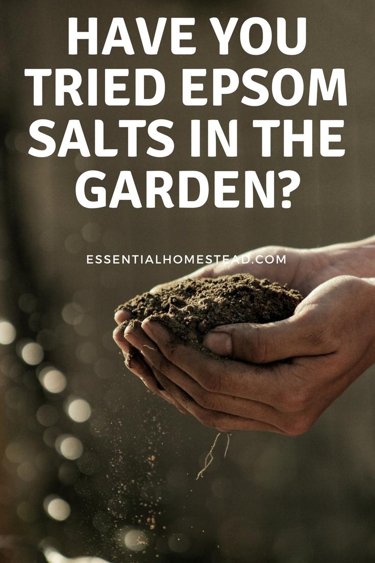 Using Epsom Salts in the Garden | Essential Homestead