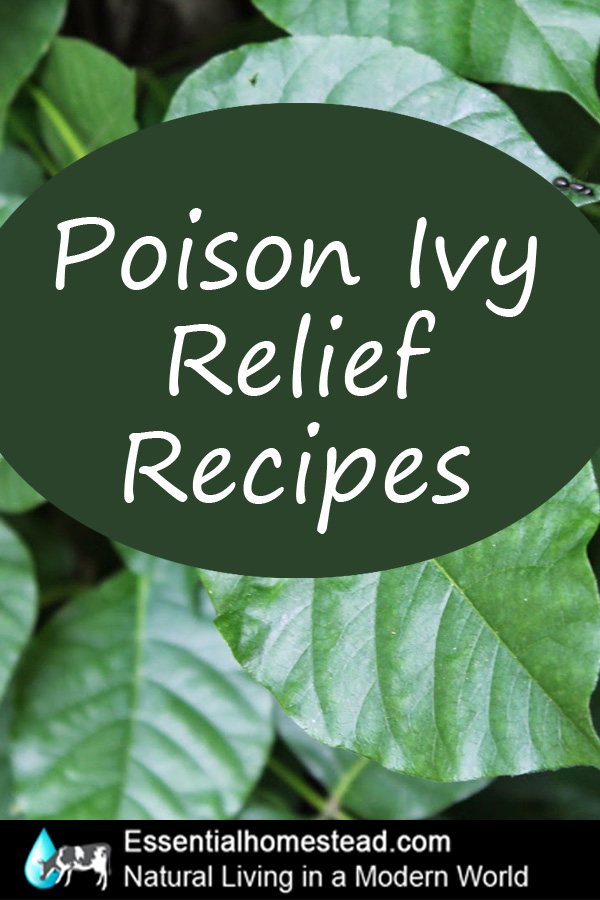 Poison Ivy Natural Home Remedies