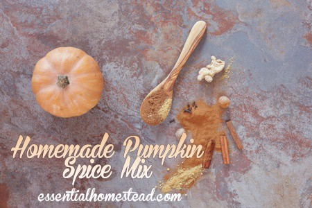 Homemade Pumpkin Spice Mix Recipe – Quick and Easy