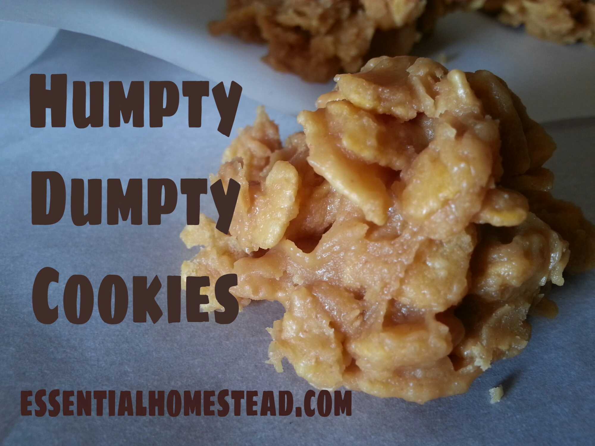Humpty Dumpty Cookie Recipe – A Holiday Favorite