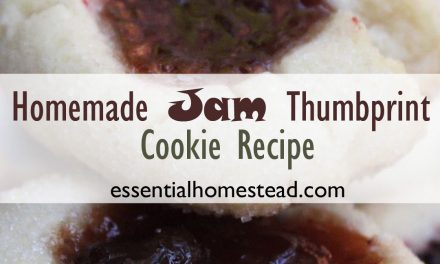 Homemade Jam Thumbprint Cookies Recipe