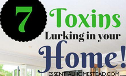 7 Hidden Toxins Lurking In Your Home