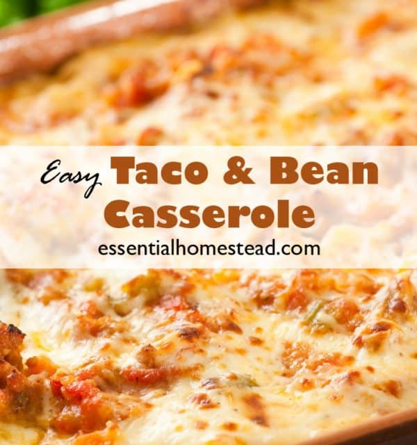 Easy Taco Bean Casserole Recipe | Essential Homestead