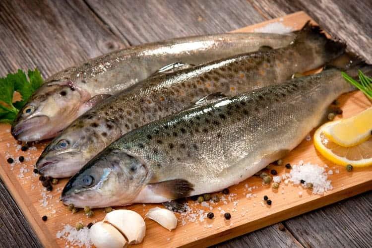 Why Catholics Eat Fish on Friday
