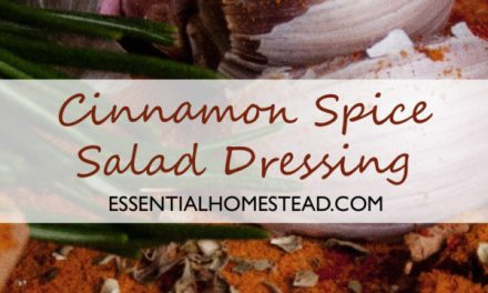 Cinnamon Spice Salad Dressing | Essential Homestead