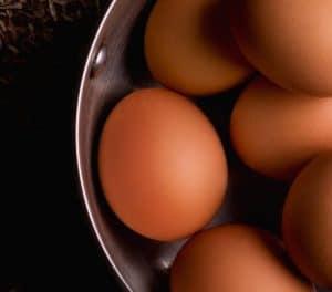 Homemade Eggshell Fertilizer | Essential Homestead
