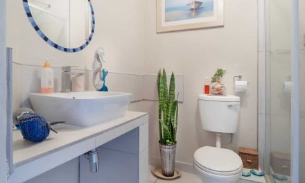 American Standard vs. Kohler Toilets: Which One is better?