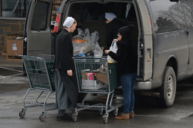 Basics – Why Do the Amish Do That?