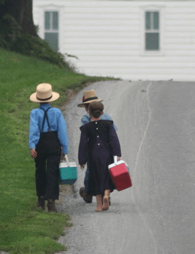 How Are Amish Different?