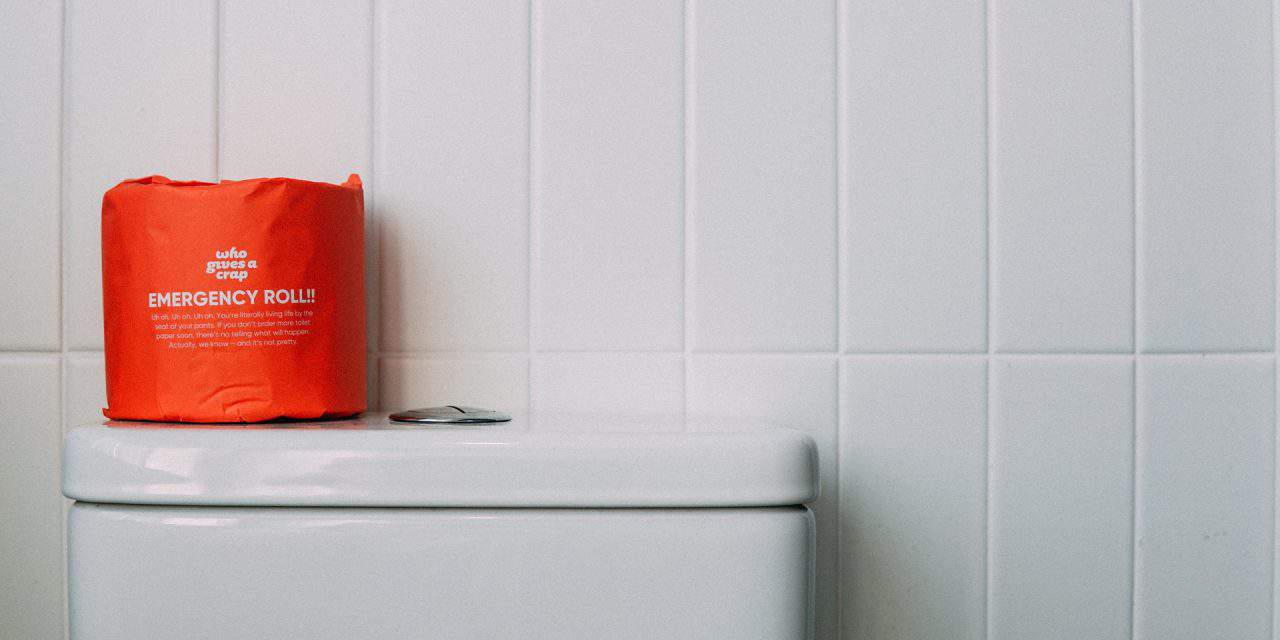 How to Prevent and Avoid Toilet Clogs: The Ultimate Guide