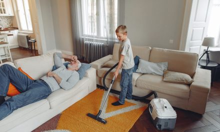 Shark Vacuums: Which One Is Right for Me?