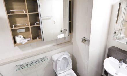 7 Best American Standard Toilets (In-Depth Review)